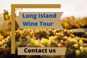 Long Island Wine Tour – Choose An Appropriate Family Tour