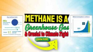 Methane is a Greenhouse Gas – Crucial Player in Climate Fight